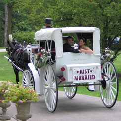 Newly Wedded Couple Riding a Horse Carriage